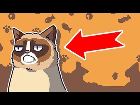 L'ANIMAL LE PLUS DIABOLIQUE DU MONDE - Grumpy Cat le jeu