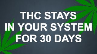 Thc Stays In Your System For 30 Days