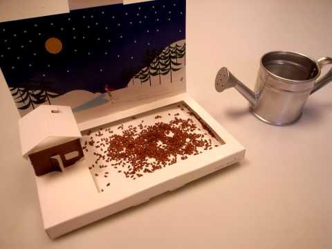 PostCarden - A mini living winter wonderland.mov