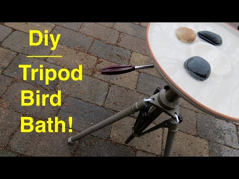 How ● I Made My Own Bird Bath With A Used Camera Tripod ! !