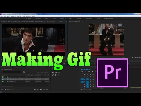 Making Gif file from Video in Adobe Premiere Pro