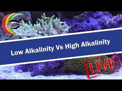 Low Alkalinity Vs High Alkalinity Aarons Aquarium Sunday Live Stream