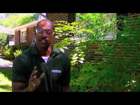 ASEEM LANDSCAPING 8-Pruning Privet Shrubs