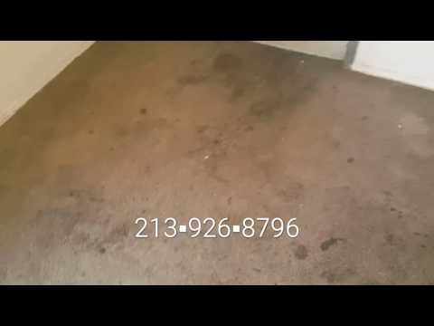 Los Angeles Carpet Cleaning Experts   Trashed Horrific Extremely Soiled Carpet   BRAND NEW NOW!!