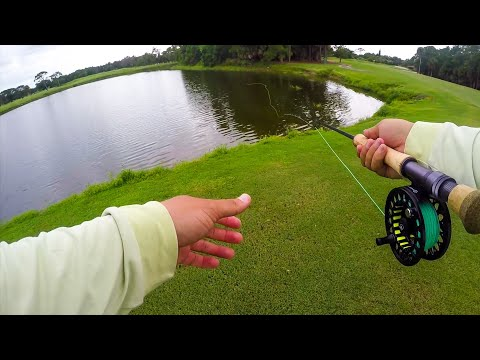 My First Time Ever Fly Fishing