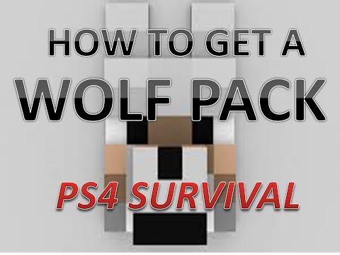 Minecraft PS4 Survival #4 Wolf Pack - How To Tame Wolves