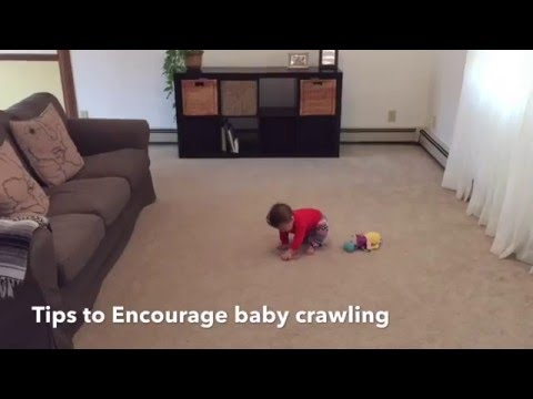 How to teach a baby to crawl- 6 month baby crawling!!