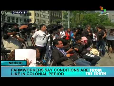 Mexico: Farm Workers Call for End to Colonial Working Conditions