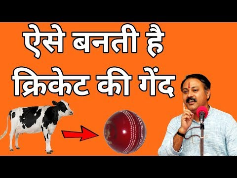 How cricket Ball, Football, Shoes, Belt, Money Purse is made    Leather products    Rajiv dixit