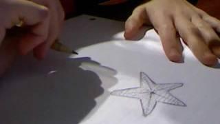 Drawing Tutorial Starfish