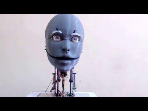 Athena : An attentive human like robot head