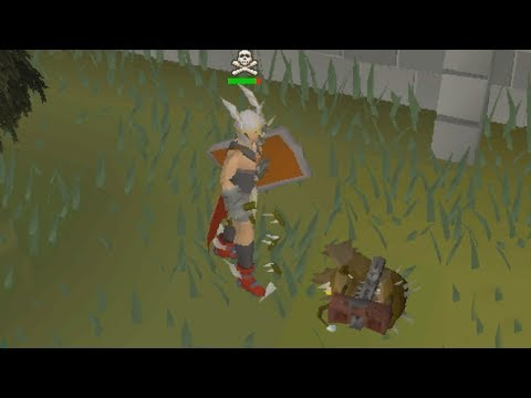 I went PKing in Max Strength