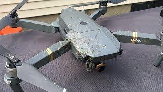 DJI Mavic Pro Drone Cuts Hornet Nest In Half