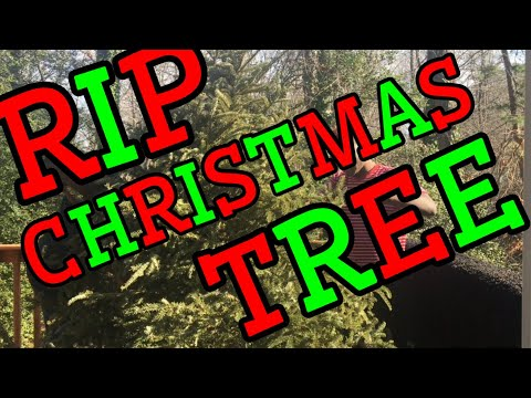 THROWING A CHRISTMAS TREE OFF A BALCONY!