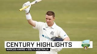 Harris hits first century of the Shield season