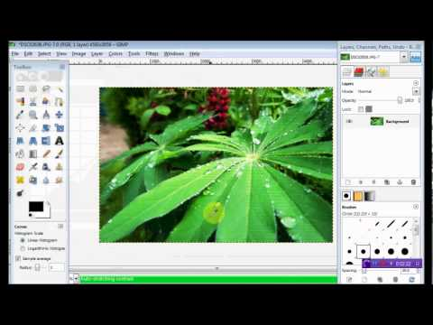 How to enhance an image on GIMP (FREE Photoshop Equivalent)
