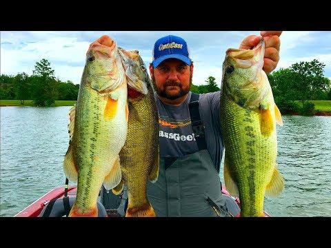 Deep Summer Bass on a New Lake