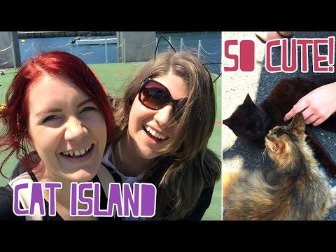 CAT ISLAND!! + Vegan Restaurant [Japan Trip 2016 Day 3]