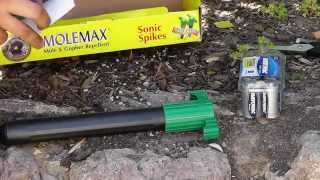 How To Keep Chipmunks Squirrels Mice Moles Gopher Away
