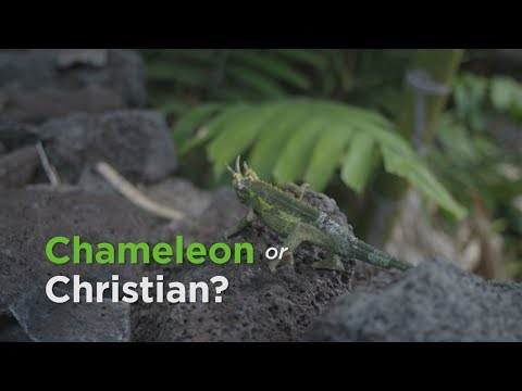 Chameleon or Christian?