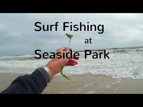 Seaside Park Surf Fishing