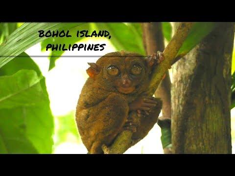Bohol tourism Philippines