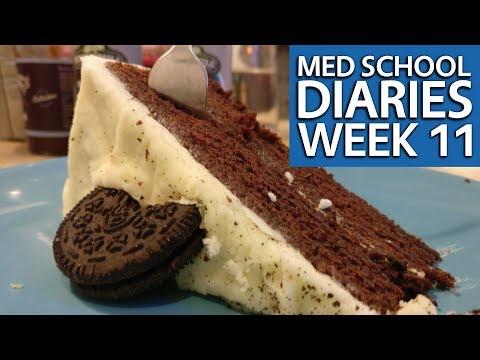 Year 1, Week 11 Graduate Entry Medicine @ Warwick Medical School | PostGradMedic
