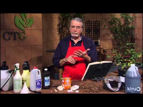 Homemade fungicides | John Dromgoole | Central Texas Gardener