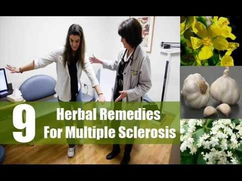 9 Best Herbal Remedies For Multiple Sclerosis