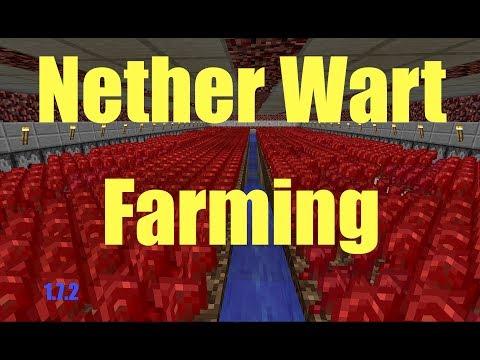 How to Grow Nether Wart - Farming | Minecraft 1.7.x