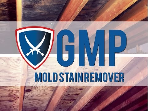 GMP MOLD Stain Remover - No More Scrubbing!  Apply & See Stains Go!