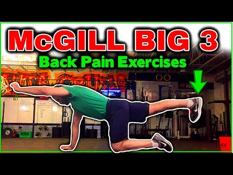 The McGill Big 3 - Best Exercises to Reduce/Prevent Back Pain