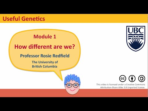 Module 1 Overview