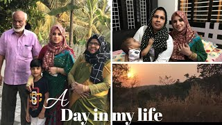 A day in my life/Easy wearing Saree design/Viewer's happy moments -Taste Tours by Shabna hasker