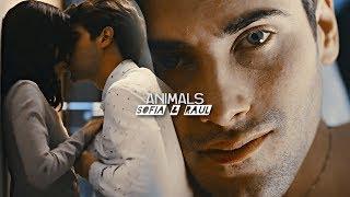 sofia & raul | animals [control z]