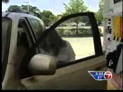 Client News: WSVN Money Monday Winn-Dixie fuelperks!