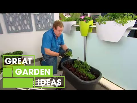 Better Homes and Gardens - Gardening: small space veggie garden | Great Home Ideas