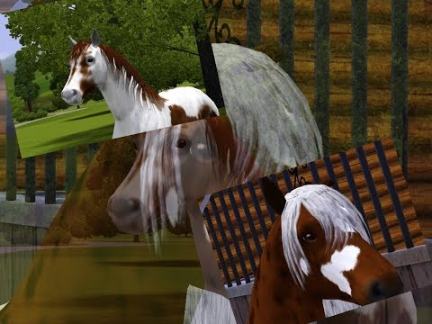 Wild Horses - Part 12 - A Sims 3 Horse Story