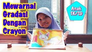 Crayon Videos 9videostv