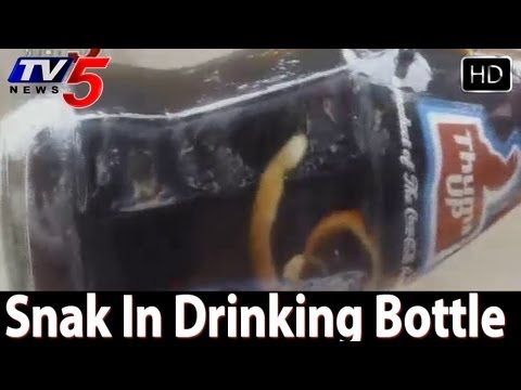 Baby Snake In Thumbs up Bottle  - TV5