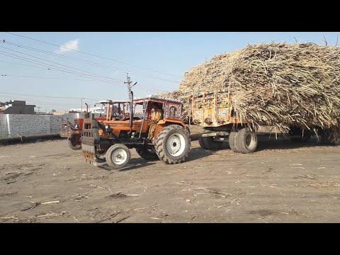 NH Ghazi 65hp Tractor stunt & Pulling 8 Wheeler Sugarcane Trolley