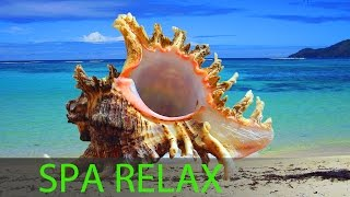 6 Hour Relaxing Spa Music, Calming Music, Background Music, Sleep Music, Spa, Massage Music, ☯357