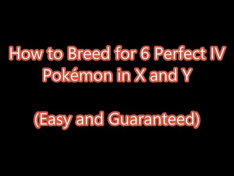 Pokémon X & Y - How to Breed for 6 Perfect IVs the Easy Way