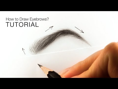 How to draw realistic eyebrows for BEGINNERS