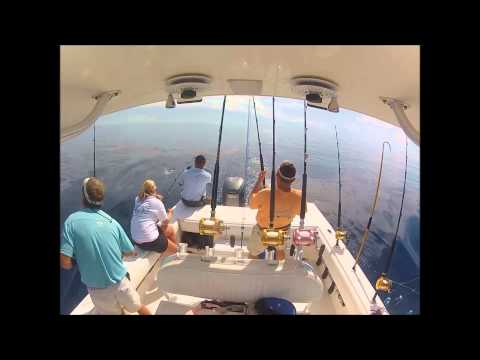Myrtle Beach Gulf Stream Fishing   North Myrtle Beach Fishing Charters