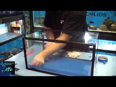 How to reseal a glass aquarium DIY