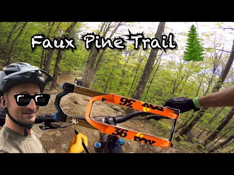 Faux Pine the most underrated Enduro Trail at Highland Bike Park | Scratching my KASHIMA  stanchion