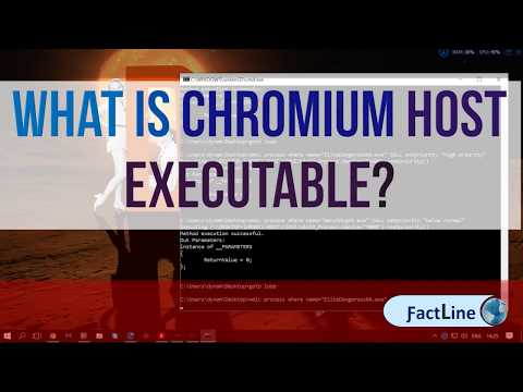 What Is Chromium Host Executable | Malware or a virus and continues regenerate..?