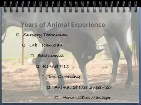 Resume Follow up Video