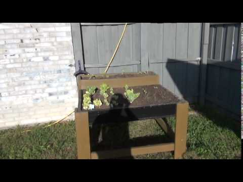 Square foot garden table top